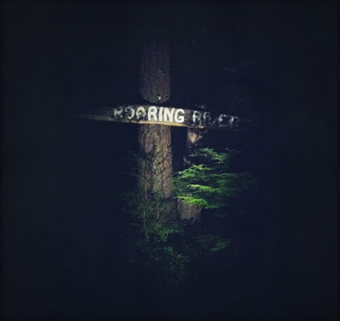 Twin Peaks - Roaring River