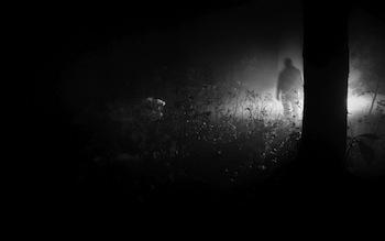 sombras-en-el-bosque-1024x640-2