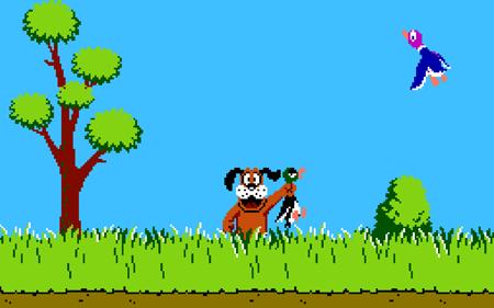 Duck-Hunt1