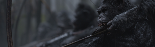 A chimp, armed with a bow and arrow and with white symbols painted on his chest, aims down to the bottom left of the screen. This is a still from the film war for the planet of the apes
